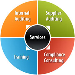 Quality Auditing LLC: Your one-stop Quality Management Systems (QMS), Internal Auditing and Supplier Auditing Provider